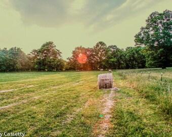 Farm Sunset Print