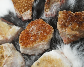 Citrine Druzy Clusters - Rough Citrine Specimen - Medium Size - Natural Stone - for Home Decor or Metaphysical