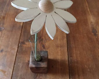 Single stem daisy.