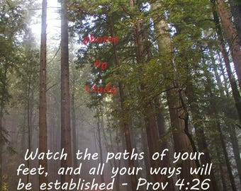 Inspirational Photo Proverbs 4: 26