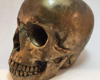 Human Skull - Antique Gold