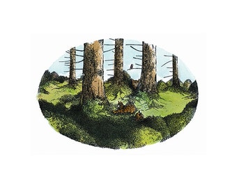 Forest Cats Print