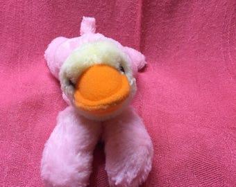 Morpho duck