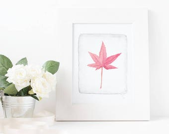 Japanese Maple - Watercolor Botanical Digital Print - Original Art 8x10 & 5x7