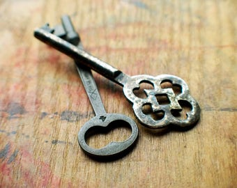 Secret Garden Duo - Antique German Key - Sargent & Co Skeleton Key