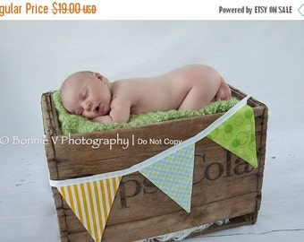 FLASH SALE 40 Percent Off SALE, Boy Fabric Bunting 5 Large Flags. Banner, Photo Prop. Designer's Choice Boy Themed Flag Banner, Yellow, Gree