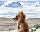 """Long Haired Dachshund Art Print """"Long Haired Dachshund At The Beach""""  Signed by Artist D J Rogers"""