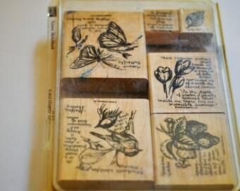 Stampin' Up! Nature Sketchbook Stamp Set