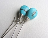 Sleeping Beauty Turquoise Earrings with Sterling Silver Kidney Ear Wires