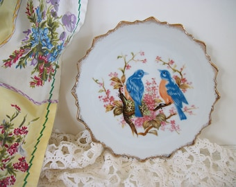 Blue Bird Decorative Plate with Hanger, Old Vintage Wall Plate Birds Design
