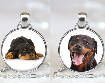 Rottweiller Dog Changeable Magnetic Pendant Necklace with Organza Bag - Choose Puppy or Adult Dog Graphic