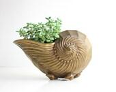 Mid Century Solid Brass Nautilus Shell Vase / Hollywood Regency Sea Shell Planter / Solid Brass Nautical Vase / Brass Planter /