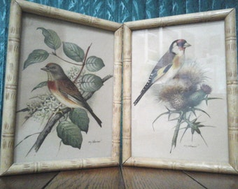 Gonner Bird Nature Prints Vintage 40's