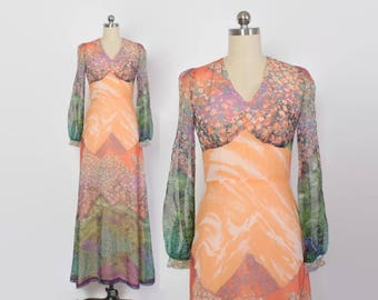 Vintage 70s Novelty Mountain Scene Maxi DRESS / 1970s Semi Sheer Chiffon Hippie Dress