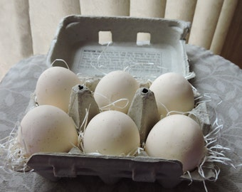 Six Artificial Beige Specks Eggs In a Carton Filler Fake Food Staging Photo Prop