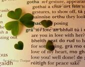 Irish Love-fine art print-love in Irish Gaelic language-Irish Wedding gift-Irish Anniversary-shamrock heart-Irish wall art-Irish Mothers Day