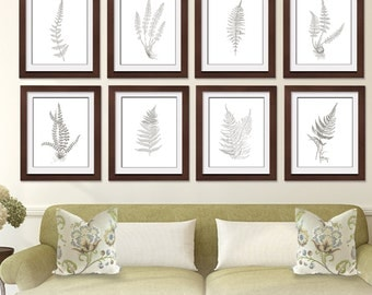 Ferns Garden Botanical Prints (Series F) Set of 8 - Art Prints (Featured in Gravel on White) Botanical Art Prints / Posters