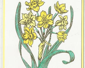 Flower of the Month-December's Narcissus