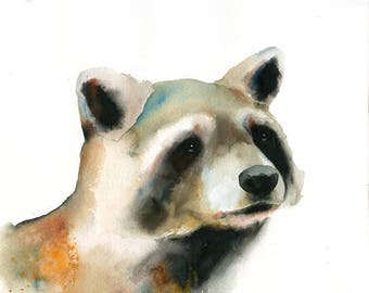 Raccoon Original watercolor painting 10x8inch