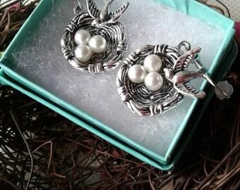 Bird Earrings,Robins Egg Earrings,Birds Nest Earrings,Baby Bird