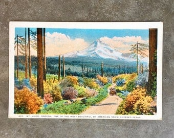 Vintage Mt Hood Oregon Post Card - Unused