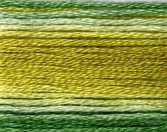 Cosmo, 6 Strand Cotton Floss, SE80-8019, Seasons Variegated Embroidery Thread, Greens, Wool Applique, Cross Stitch, Embroidery
