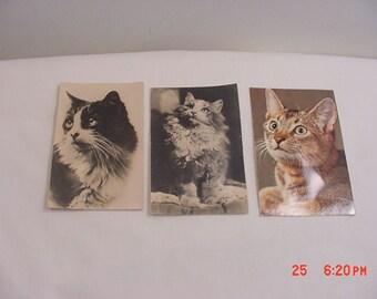 3 Vintage Squeaker Cat Or Kitten Postcards Made In France  17 - 528