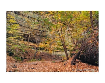 "Fine Art Color Landscape Photography of Starved Rock State Park in Illinois - ""Trail in Tonty Canyon"""
