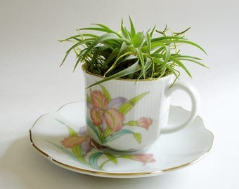 Tea Cup Planter, Air Planter, Orchid Mist Tea Cup and Saucer, House Warming Gift, Tea Cup Decor, Tea Cup Collectors, Mother's Day gift