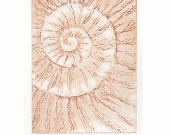 Etching no.40 original print jurassic ammonite fossil Dorset coast fossil spiral fossil ammonites golden section