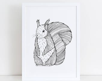 A1 / A2 Squirrel Art Print | Squirrel Poster | Animal Art Drawing