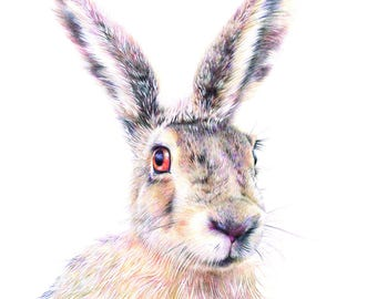 March Hare - A6 Print 4.1 x 5.8 in