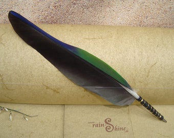 Ballpen: Green & Black Parrot Feather Quill Pen with leather grip