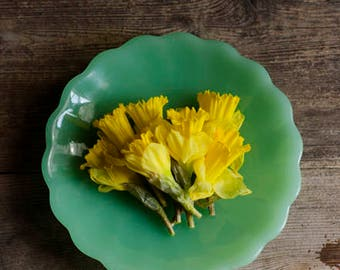 yellow daffodil art, flower and book art, rustic flower art, floral art print, farmhouse decor, yellow and jade, floral nursery art,