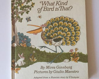 What Kind of Bird Is That? by V. Suteyev (1988, Hardcover)