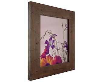 """Craig Frames, 22x30 Inch Dark Brown Picture Frame, Bauhaus 2"""" Wide (FM74DKW2230)"""