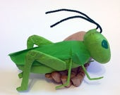 Grasshopper Surprise Ball - Unisex, Ages 6 and up