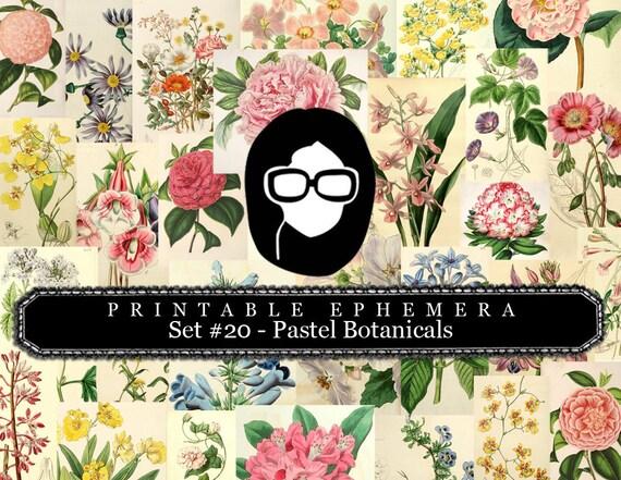 Junk Journal Kit - Printable Ephemera Set #20 - Pastel Botanicals - 30 Page Instant Download, ephemera pack, journal cards, journaling card