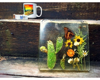 9X9 Preserved Nature, Resin Wall Hanging