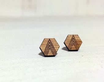 Hexagon Shape study earrings