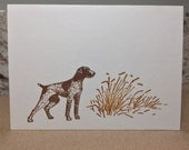 german shorthaired pointer cards, german shorthaired pointer stationery, german shorthaired pointer, GSP notecards, 8 cards