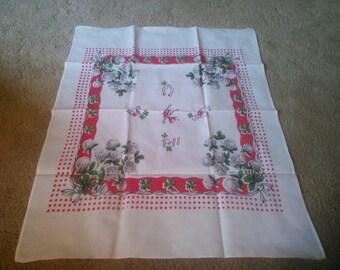 Vintage Dish Towel - Red and White Dish Towel - Vintage StarTex Kitchen Towel