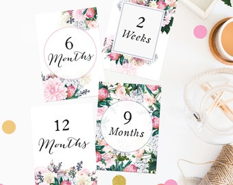 Pretty Protea Wedding Countdown Milestone Cards Floral Berries Pink Green Flowers Garden Wedding Stationery Wedding Planning