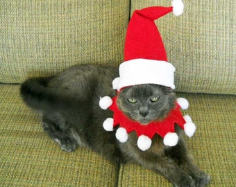 Christmas Pet Santa Costume- Small Dog or Cat Christmas Costume
