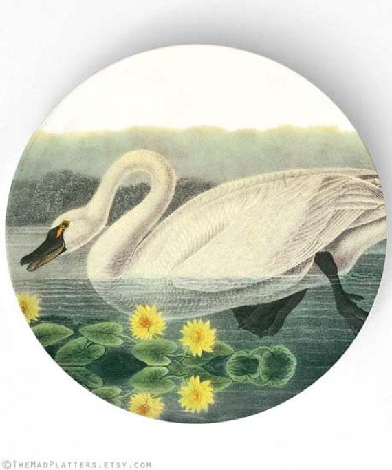 Swan, Audubon bird melamine plate