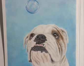 Curious George the Bulldog~ Original Colored Pencil Drawing