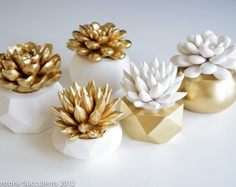 Sale: Gold Set of 5 Succulents in Round Containers, Tabletop, Desktop, Modern, Home and Office Decor