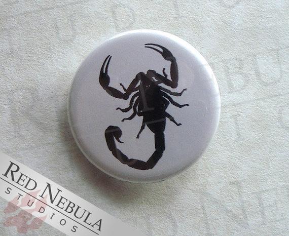 Scorpion Pinback Button, Magnet, or Keychain, Arachnid Button, Creepy Crawlers, Black Scorpion Pin, Scorpion Button, Entomology, Arachnology