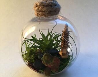 Succulent Terrarium Ornaments