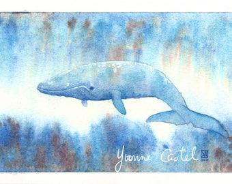 Blue whale. Watercolor on format 10 x 15 cm